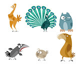 Six birds set