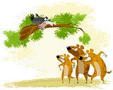 Crow teases hyena