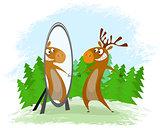 Elk with mirror