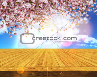 3D wooden table against a defocussed cherry tree blossom backgro