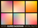 Blurred abstract backgrounds set.