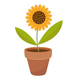 Sunflower in a flowerpot. icon flat, cartoon style. Isolated on white background. Vector illustration, clip-art.