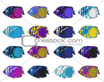Fish colorful set. Hand drawing. Vector illustration.