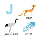 Cute Animal Zoo Alphabet. Letter J for Jaguar, jellyfish, Japanese crane .