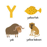 Letter Y. Cartoon alphabet for children. vector illustration animal Yak, yellow fish, yellow baboon