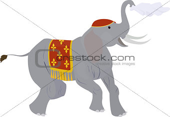 Circus elephant waving a handkerchief isolated on white
