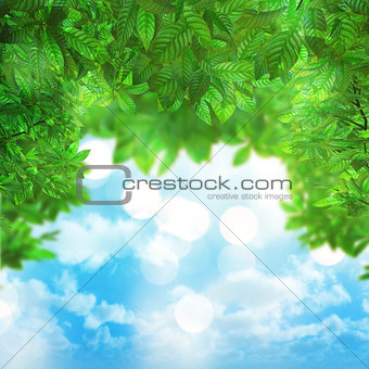 3D leaves on blue sky background