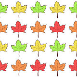 Seamless pattern with rows of cute maple leaves