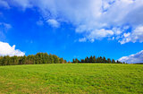 Green Grass Field Landscape and blue sky.