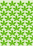 Green leaves pattern illustration