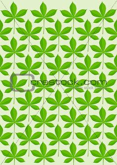 Green leaves pattern illustration
