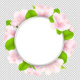 Apple Tree Flowers With Speech Bubble
