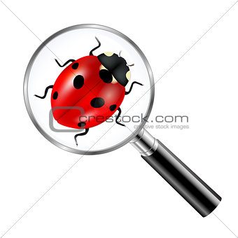 Black Magnifying Glass With Ladybug