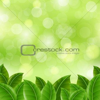 Green Banner With Leaves
