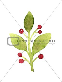 Green branch with red berries