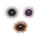 Urchin animal cartoon character