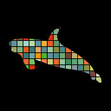 Shark predato color silhouette animal