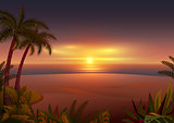 Sunset on tropical island. Palm trees, sea and beach