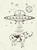 UFO abducts a cow