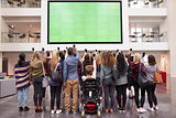 Students photograph screen with phones, back view full length
