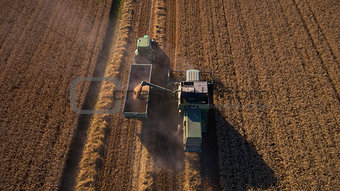 Aerial View As Tractor Collects Wheat From Combine Harvester