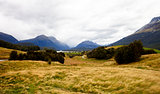 Landscape Near Queenstown In New Zealand's South Island
