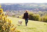 Mature Man Taking Golden Retriever For Walk In Countryside