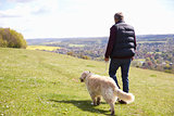 Rear View Of Man Taking Golden Retriever For Walk