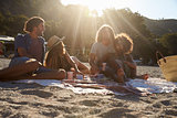 Two couples having a picnic on the beach, backlit, close up
