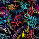 Bright multicolored pattern of leaves of palm trees