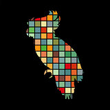 Parrot bird cat pet color silhouette animal