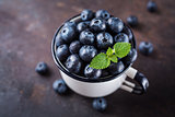Freshly picked blueberries in a cup.