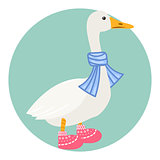 Cartoon duck in scarf isolated vector illustration.