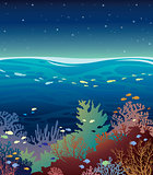 Coral reef with fish and night sky.