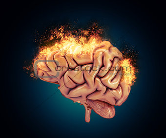 3D brain with flames