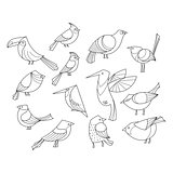 Birds set. Lined vector collextion.