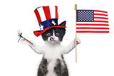 Funny Kitten Celebrating the American Holiday 4th of July