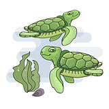 Vector illustration of a cute cartoon sea  turtle.