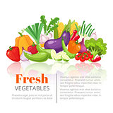 Vegetables poster,scientific article, heading, or vegetarian menu design template. Fresh farm tomato, pepper, carrot, onion, garlic, pumpkin, potato, eggplant, corn, beet, zucchini, pea, cabbage, lettuce vegetable . Vector illustration.