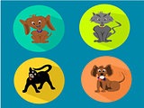 Icon Circle Set of Dogs and Cats Flat Design