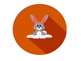Grey rabbit flat design circular icon