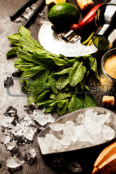 Mojito cocktail ingredients