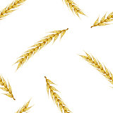 Seamless background with wheat spikelets, vector illustration.