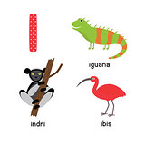 Cute Animal Zoo Alphabet. Letter I for iguana, ibis, indri