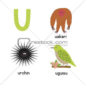 Cute zoo alphabet in vector. U letter. Funny cartoon animals: urchin, uakari, uguisu