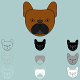 Dog face brown black grey white icon.