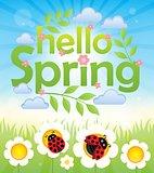 Hello spring theme image 6