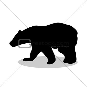 Bear wild black silhouette animal