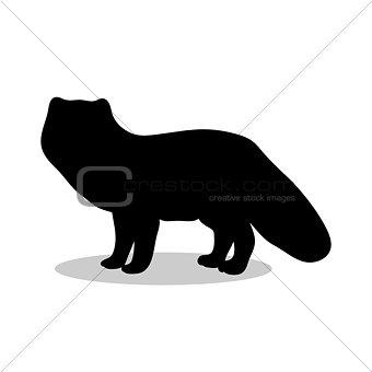 Fox arctic black silhouette animal