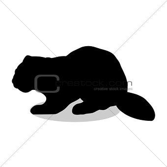 Beaver wildlife black silhouette animal